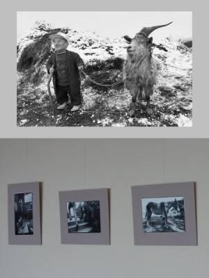 garliavoje-naujos-fotografiju-parodos