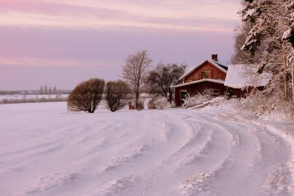 ziema-ora-labiausiai-tersia-individualiu-namu-kaminai