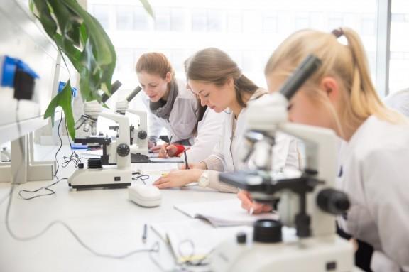 https://www.kaunieciams.lt/wp-content/uploads/2017/04/jauniems-mokslininkams-galimybe-pasaulinio-lygio-mokslininko-karjerai-lietuvoje.jpg