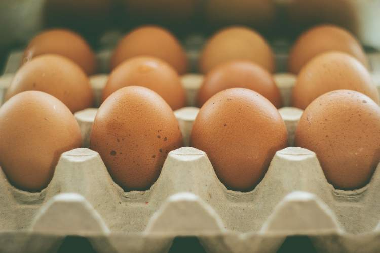 gerasis-ir-blogasis-cholesterolis-sveikas-jo-kiekis-organizme