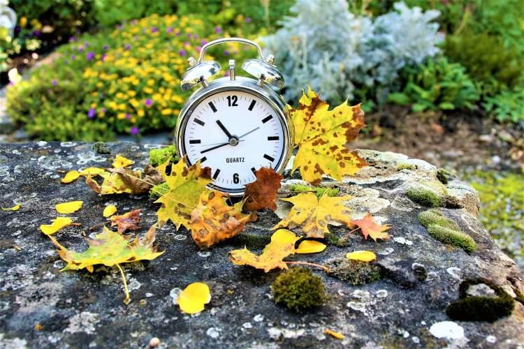 m-puidokas-europos-komisija-pritaria-laiko-nebesukiojimui