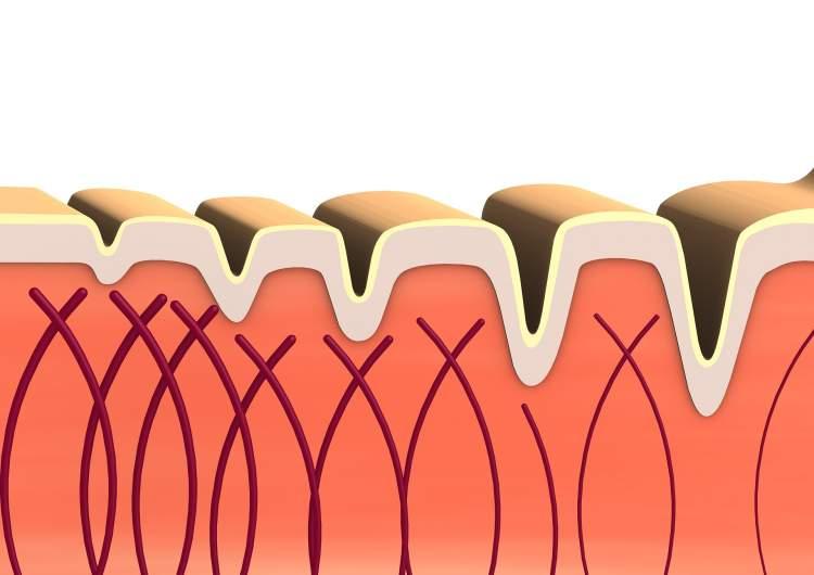 kolagenas-naudingas-ne-tik-groziui-padeda-isvengti-judejimo-problemu