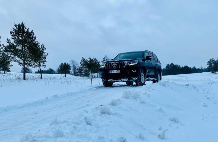 https://www.kaunieciams.lt/wp-content/uploads/2019/01/winter-rally-tramplynas-130-cm2-zvyro-2-dienos-darbo-ir-2-men-susigulejimo.jpg