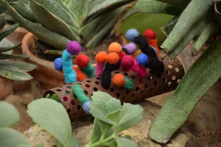 https://www.kaunieciams.lt/wp-content/uploads/2019/02/kauno-botanikos-sode-uzsimezge-tekstiles-ir-kaktusu-draugyste.jpg
